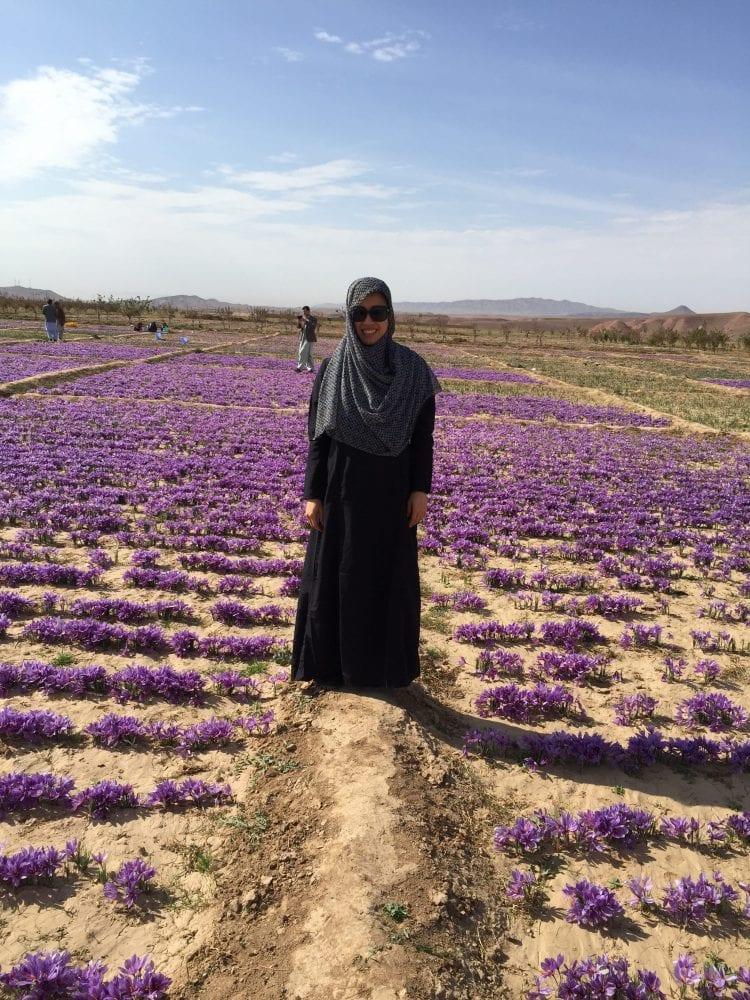 Woman in saffron fields